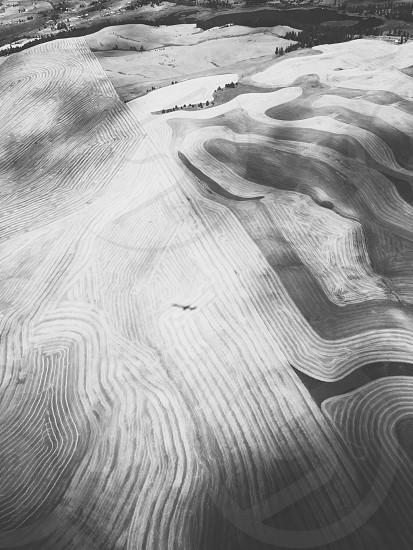 Looking down at our shadow - airplane's shadow and farmer's fields contours. photo