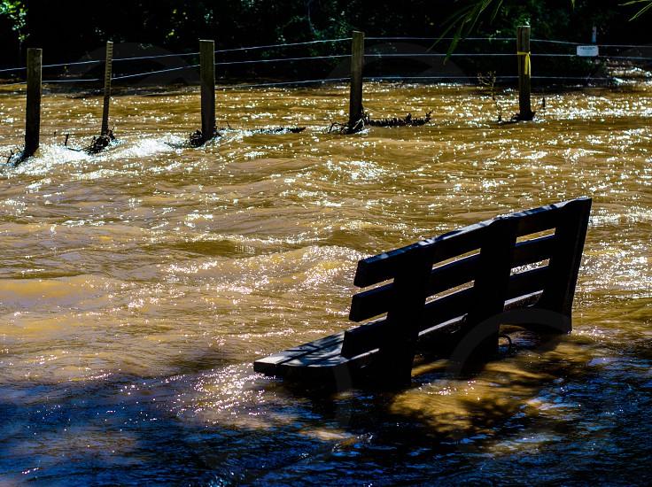 Flooding and bench. (Boulder Colorado) photo