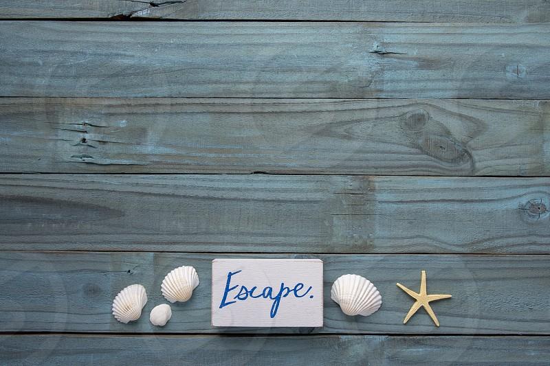 A minimalist beach themed flat lay on a blue wooden backdrop photo