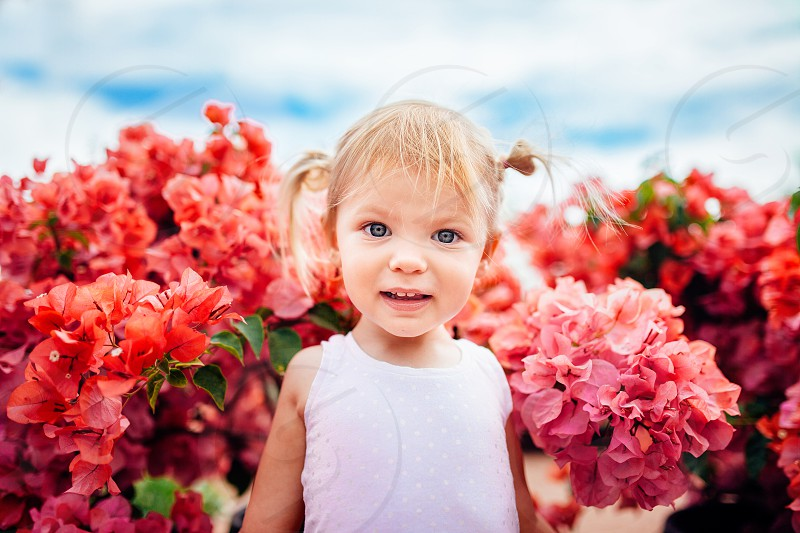 spring flowers toddlers pink blue sky photo