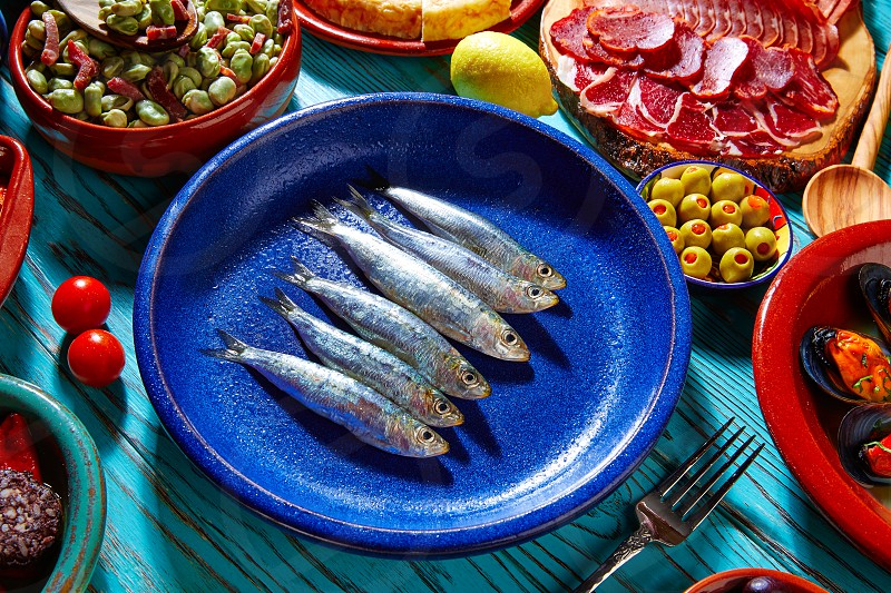 Tapas from spain sardines and mix of most popular recipes of Mediterranean photo