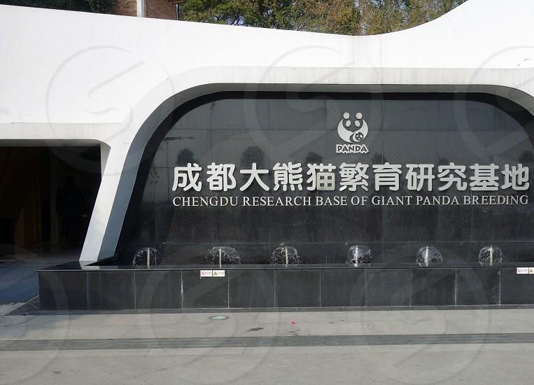 Chengdu Research Base of Giant Panda Breeding Chengdu China photo