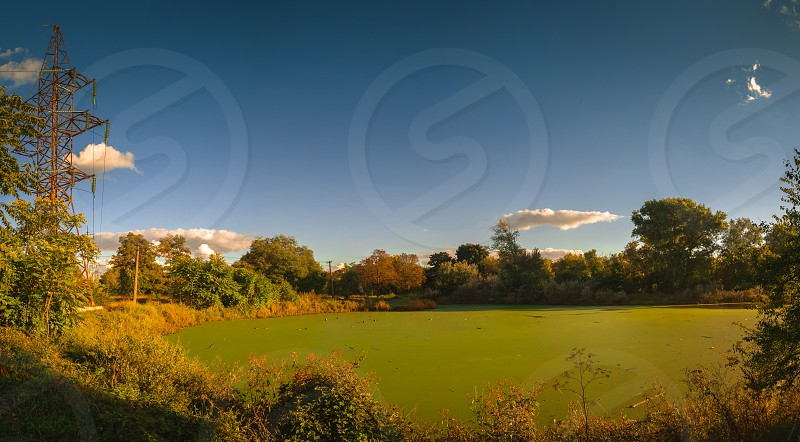 Panoramic view of the Old dirty green pond covered with duckweed and mud in a summer day photo
