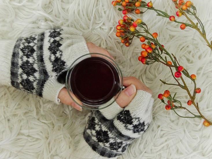 mittens hot drink tea decoration drink furry furry background fingershands gloves wintertime winter season relaxing enjoy flower warmth  photo