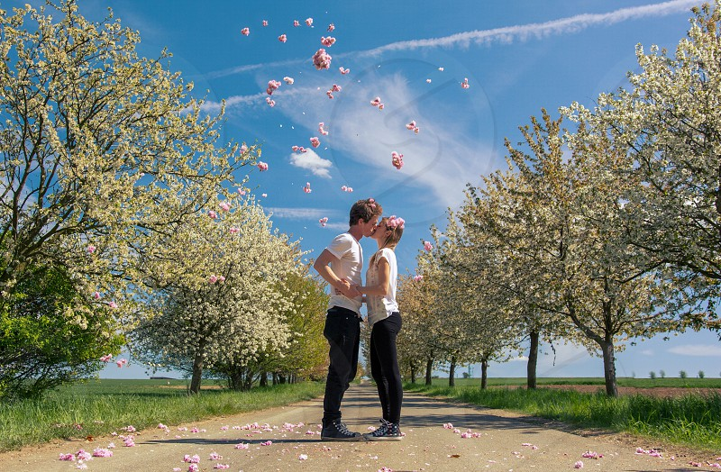 A loving couple kisses on a path full of spring flowers. photo