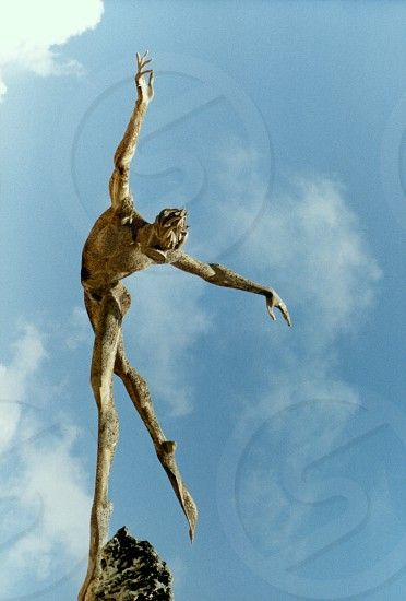 Statue of Diver photo