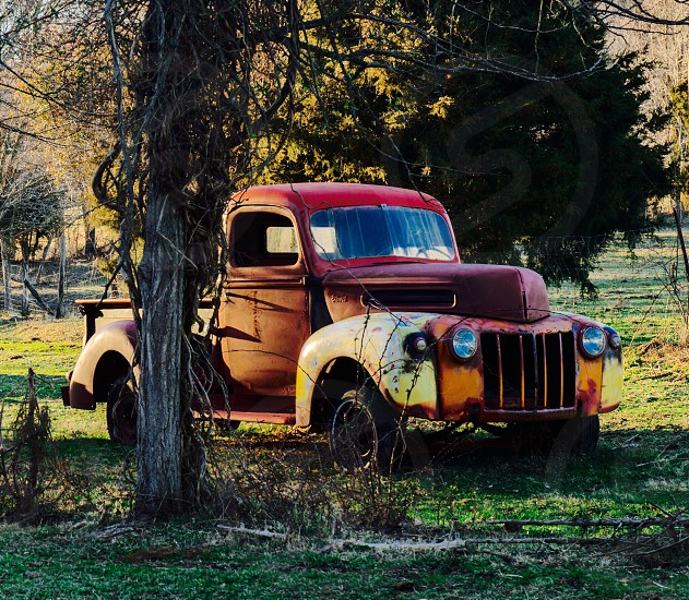 Antique truck colorful field trees farm photo