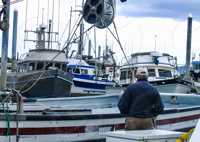 A sailor looks at a portion of the fishing industry fleet in the harbor of Homer Alaska. photo