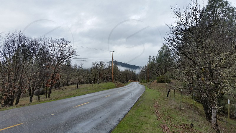 Northern California March Road Mist Clouds Mountains Trees jpurney travel trinity county photo