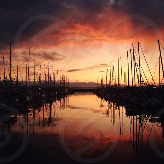 Seattle marina sunset photo