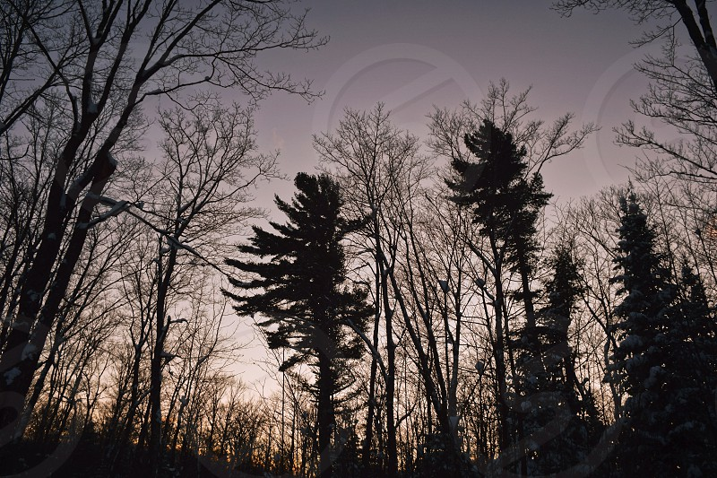 Shot in Hiawatha conservation area in Sault Ste. Marie Ontario photo