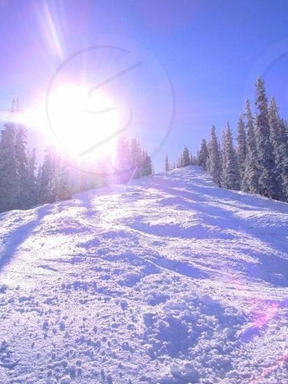 Snow ski skiing winter nature treelined skislope bright vivid sun sunlight sunburst  photo