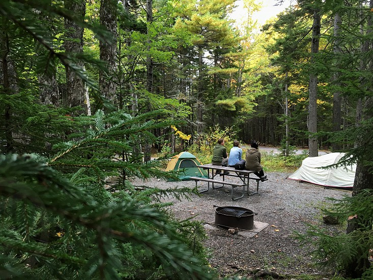 3 women sitting on brown wooden picnic table near white camping tent in woods during daytime photo