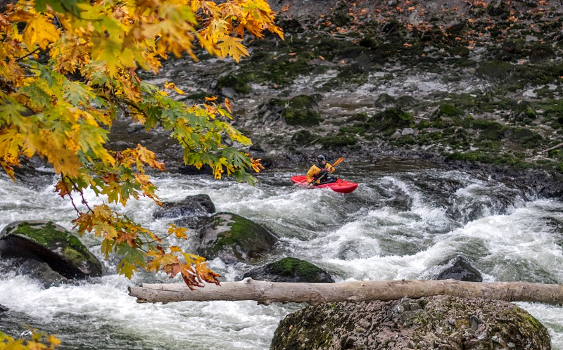 human in yellow jacket on kayak photo