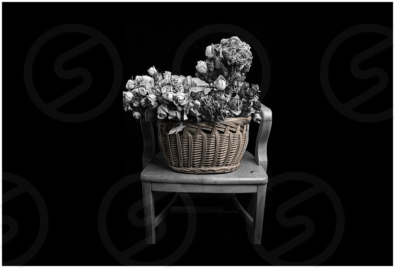 chair and flower basket photo