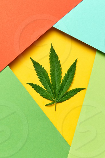 Decorative colorful frame from paper with marijuana leaf on an yellow background copy space. Concept use of cannabis for medical puposes. photo