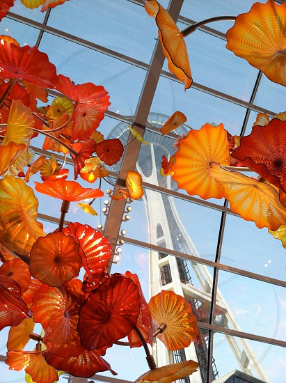 yellow and red leaves space needle photo