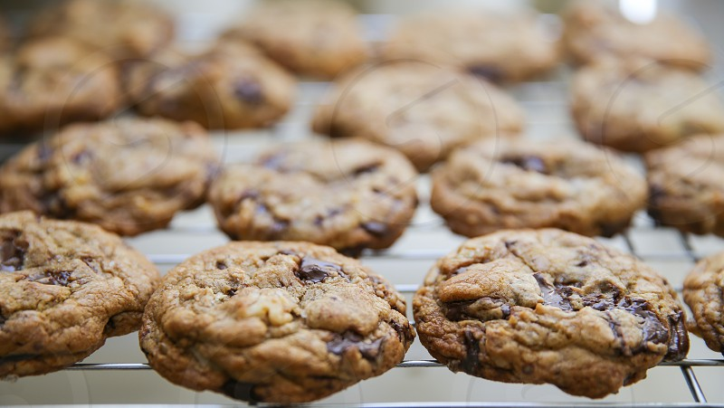 Fresh Baked Chocolate Chip Cookies photo