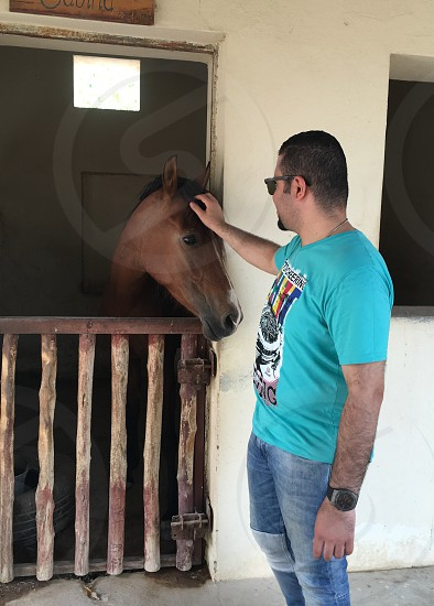 Loving horses  photo