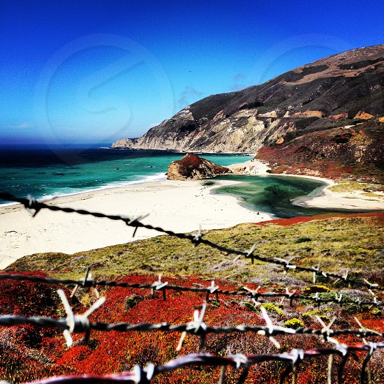brown barb wire and blue ocean photo
