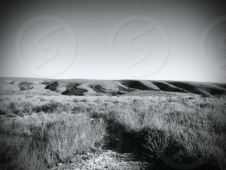 Carlsbad New Mexico photo