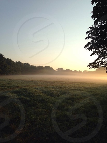 green field coverd with fog during daytime photo