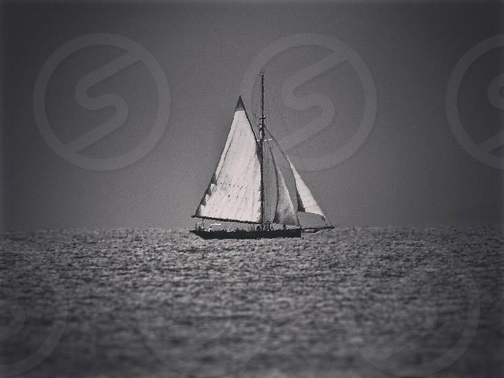 white and black sailboat on sea photo