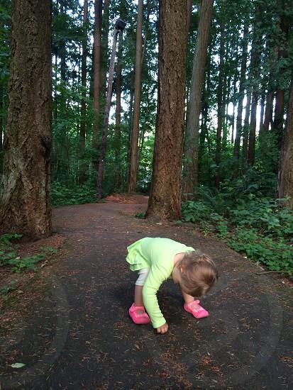 Toddler picking up pine needles on path photo
