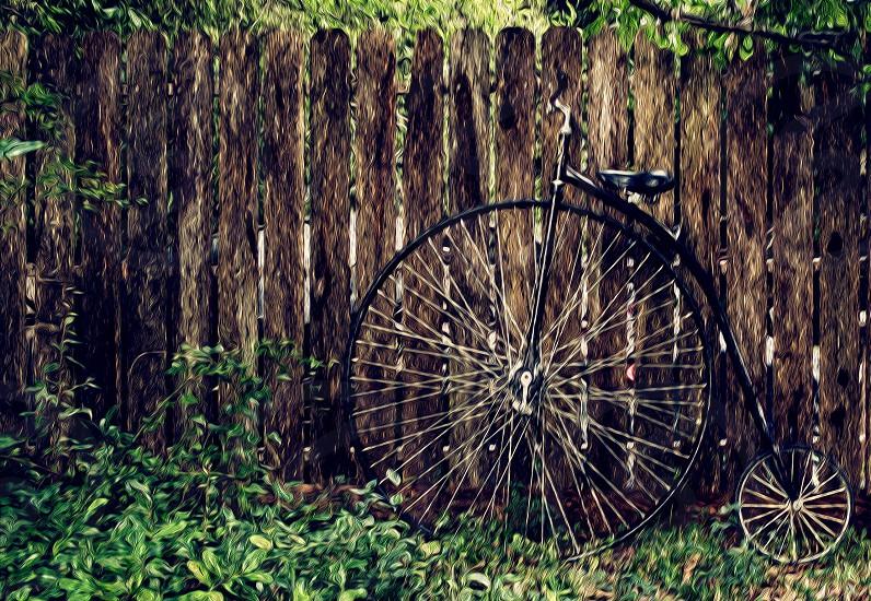 black vintage bicycle  photo