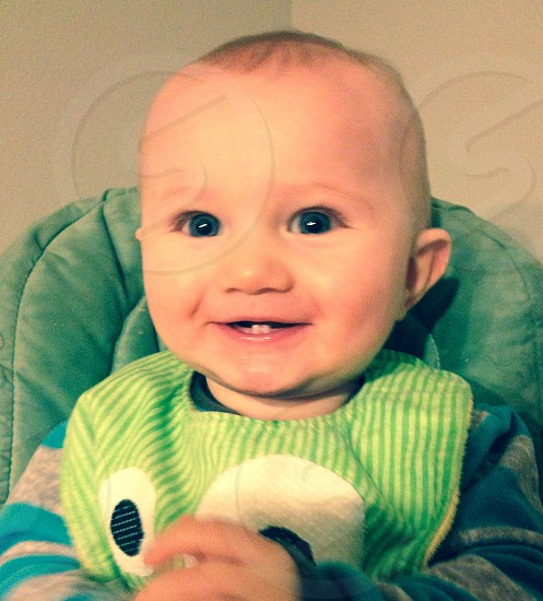 Two front teeth. Baby. Camber.  photo