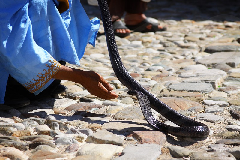 In the cobble streets of Tangier Morocco a snake charmer putting on a show photo