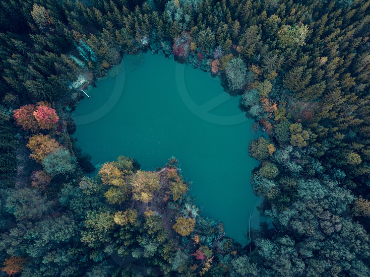 Aerial view of a lake surrounded by colourful autumn forest trees. Drone photography photo