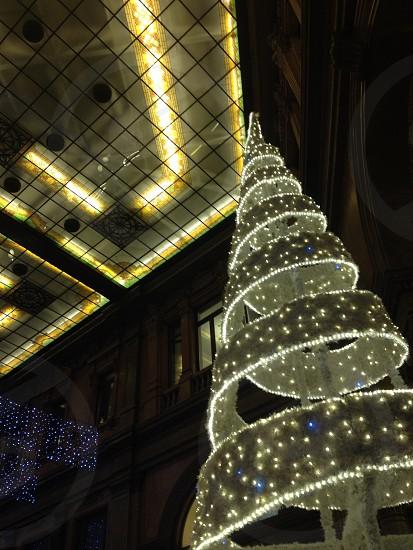 Natale christmas light tree xmas rome roma  photo