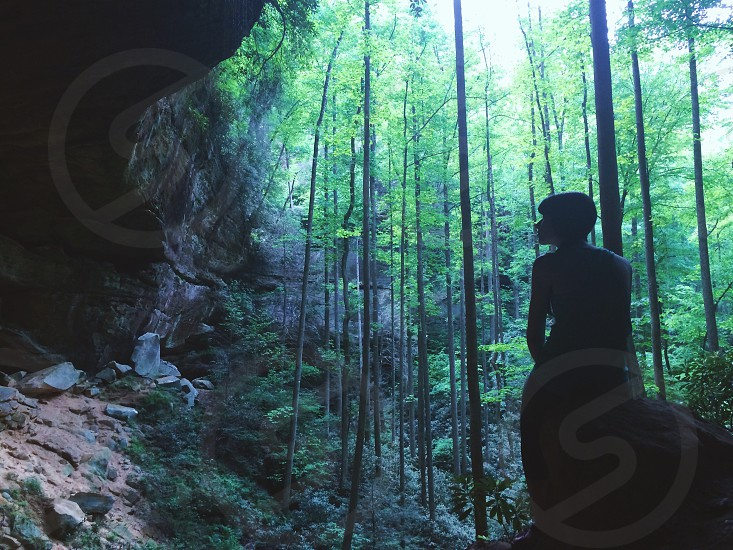 Nature cave forest photo