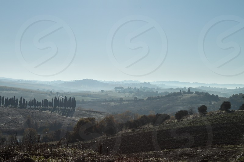 Chianti hills in a misty morning photo