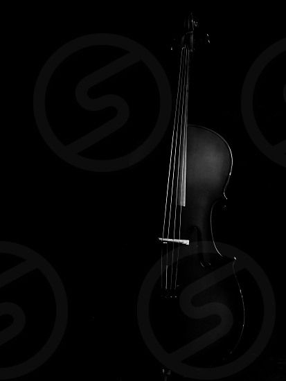 dark wood bass instrument in the dark grayscale photo photo
