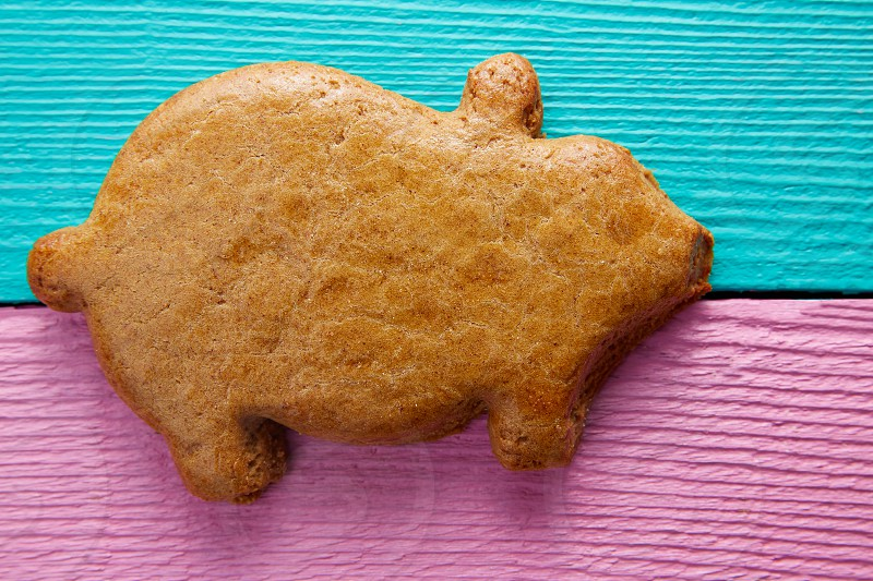 Mexican puerquito piggy shape pastry from Mexico photo