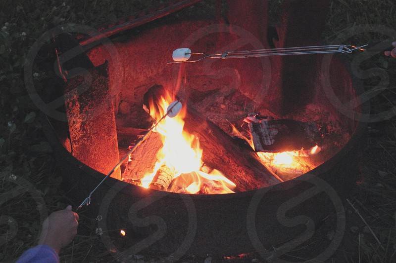 Camp camping fire wood roast roasting hot night nighttime outdoors outside marshmellow food sweet eat photo