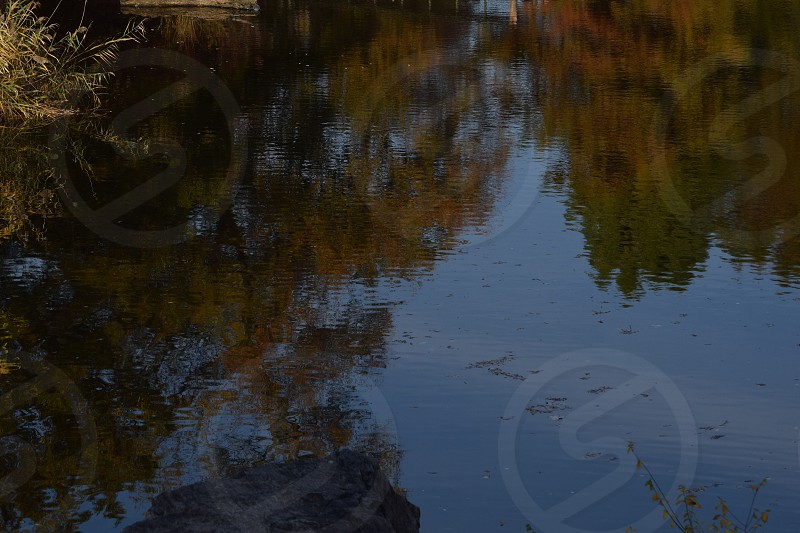 Colors and reflections photo