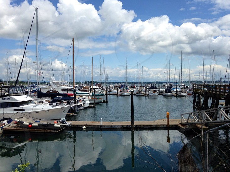 yachts on sea under blue sky photo