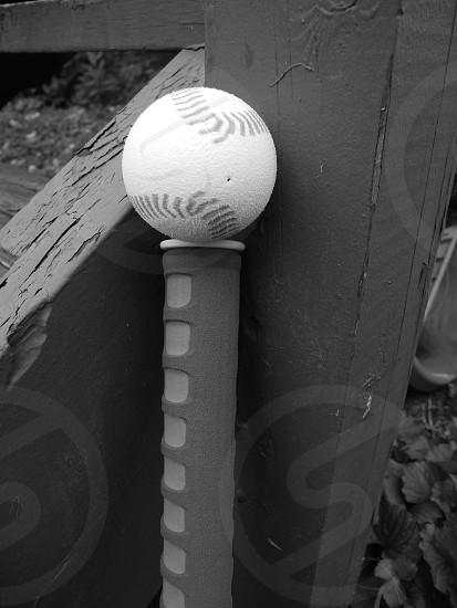 child's baseball in the backyard photo