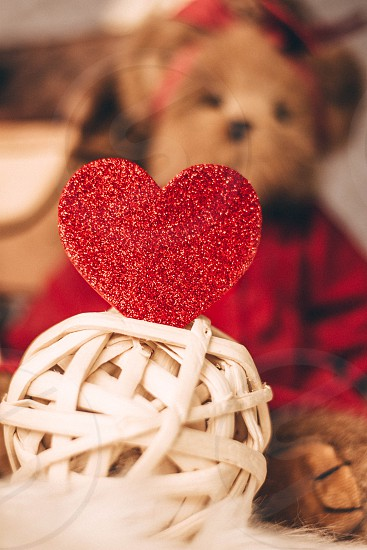 Fuzzy brown bear sending love for Valentine's Day photo