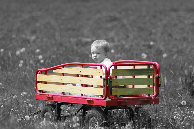 BW Boy in Color Splash Red Wagon photo