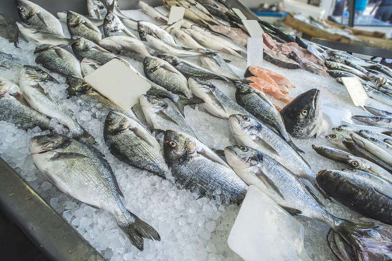 Fish on ice in the market. Greece Athens Piraeus photo