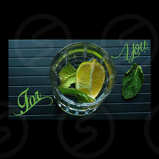 clear rocks glass with sliced lemon and green leaves inside photo