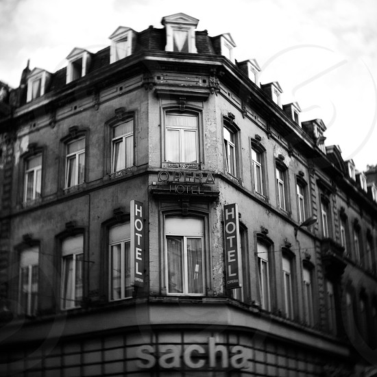 gray sacha hotel photo