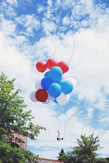flying red and blue baloon photo