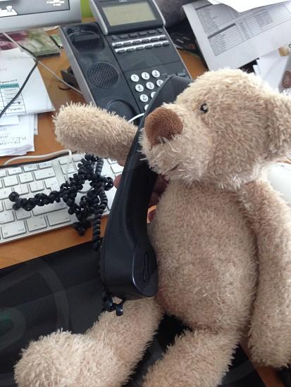 gray teddy bear near black ip phone photo