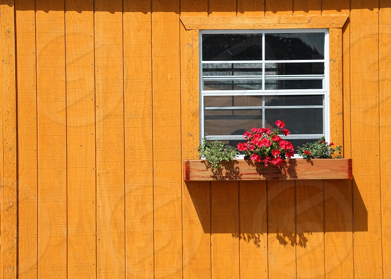 Detail of an orange wooden building with a small window and window box with flowers photo