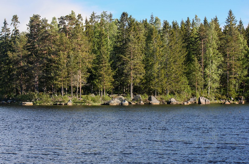 the shore an a line of trees in a small town langvindsbruk north of Sweden is a travel destination. photo